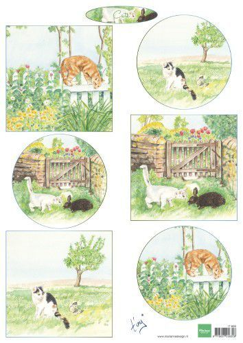 Marianne D Decoupage Tiny's katten IT609 A4 (04-19)